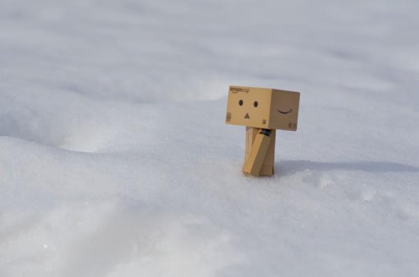 雪に埋もれたダンボー