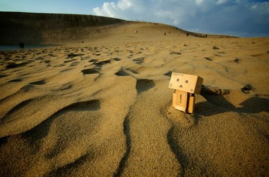 鳥取砂丘に埋まるダンボーと風紋