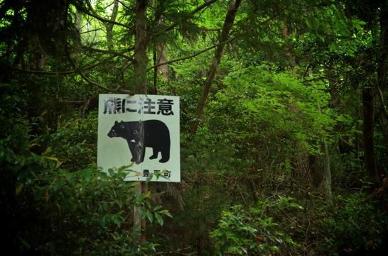 龍頭山熊に注意