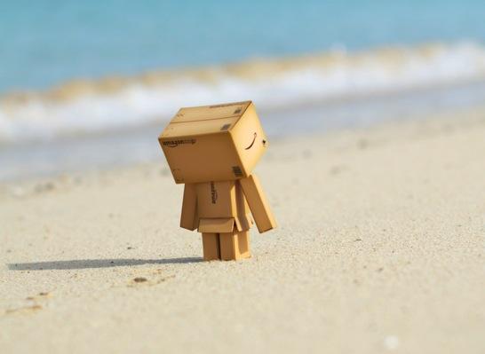 砂浜のダンボー
