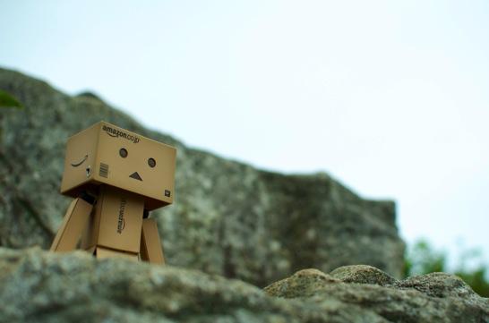 岩場から見上げるダンボー