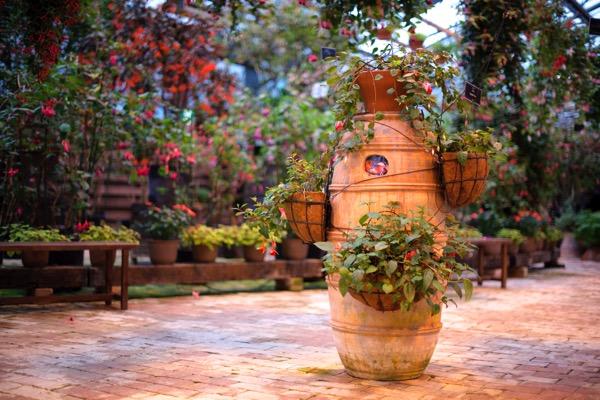 フォーゲルパーク 花壇