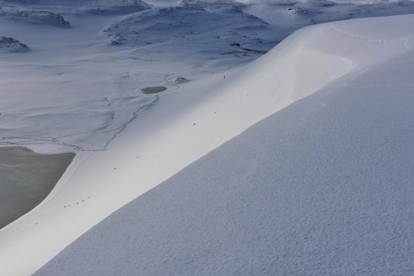 鳥取砂丘 雪の馬の背