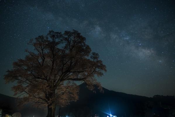 千鳥別尺のヤマザクラと天の川
