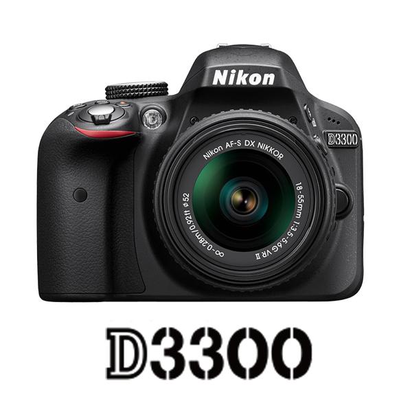 D3300