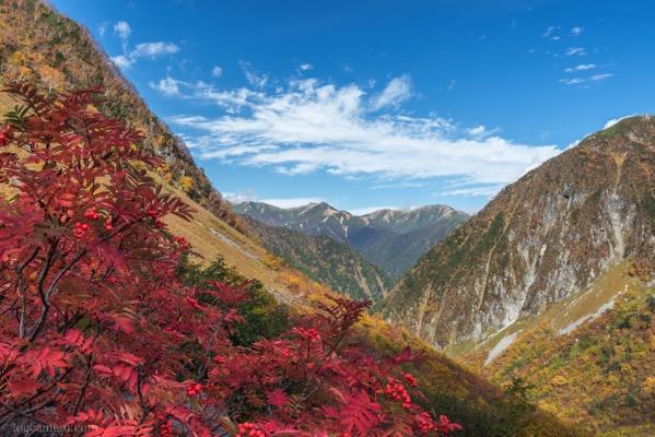 涸沢 パノラマコースから見る紅葉