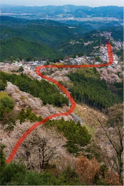 S字構図 吉野山