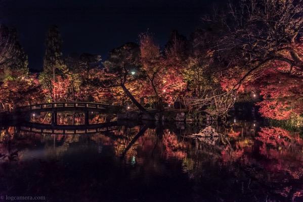 永観堂 紅葉 ライトアップ