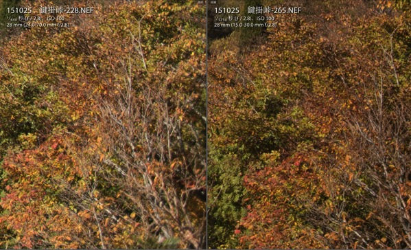 Nikon TAMRON比較 28mmf2.8 周辺