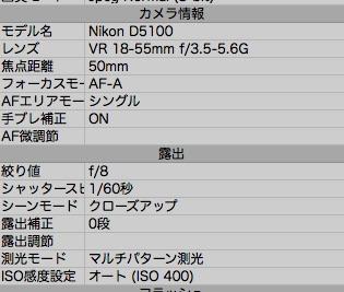 NX-D 検索