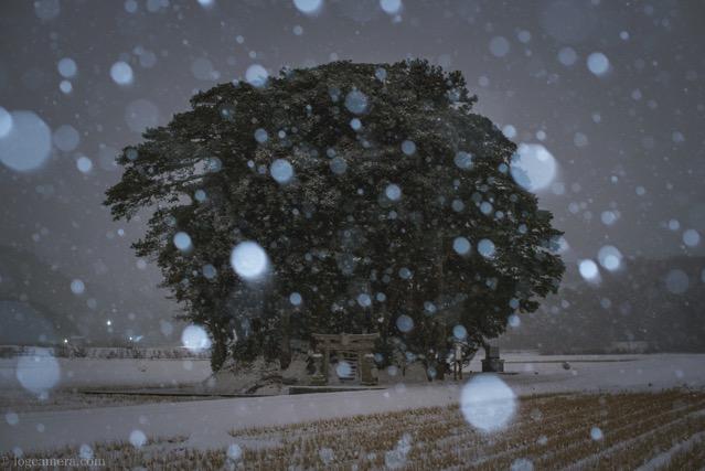 雪の小原神社
