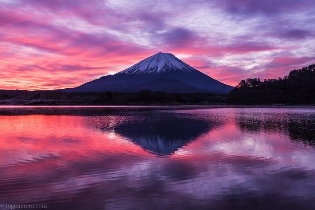 富士山 精進湖 朝焼け リフレクション