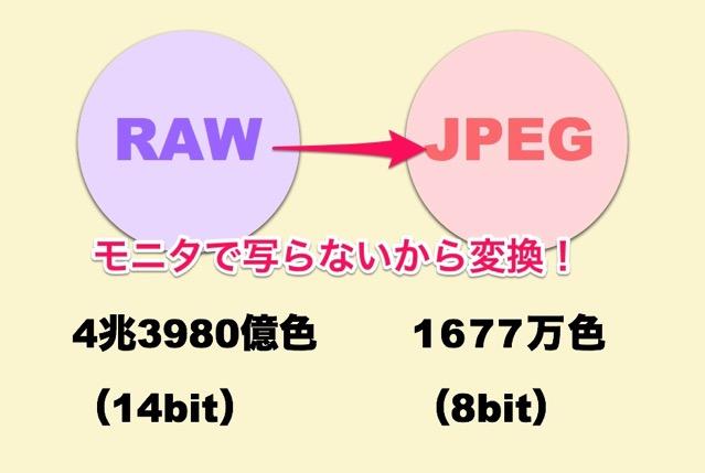 RAW JPEG 8bit