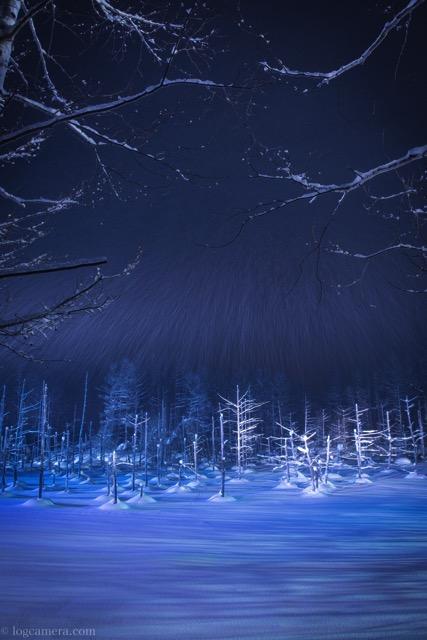 青い池 ライトアップ 美瑛 冬 北海道 雪