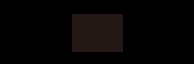 ログカメラ