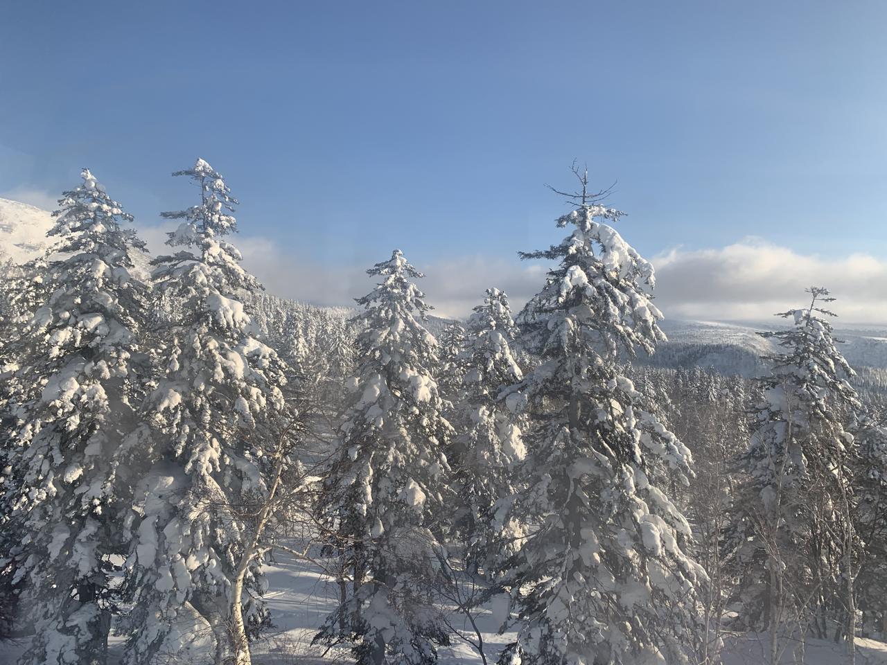 旭岳へのロープウェイ