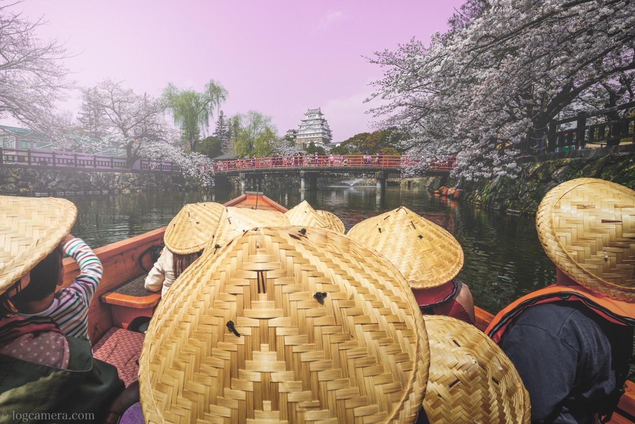 姫路城と桜を船の上から