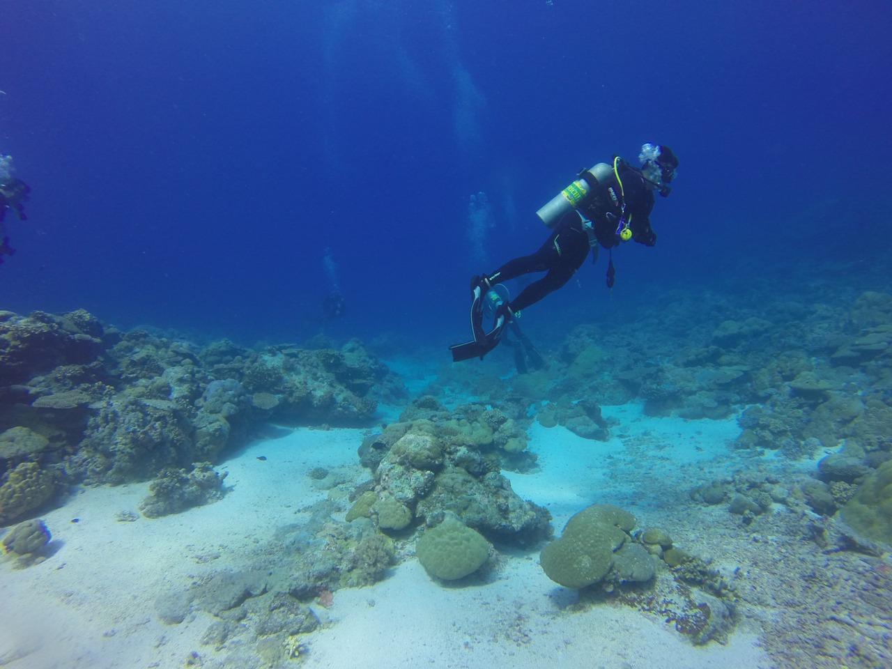 Dive 1149013 1280