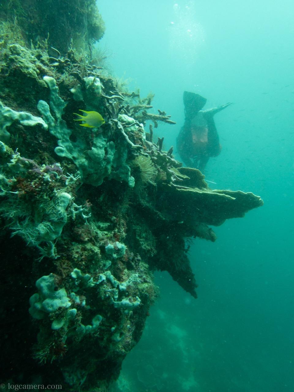 ナルスアン島 ダイビングスポット