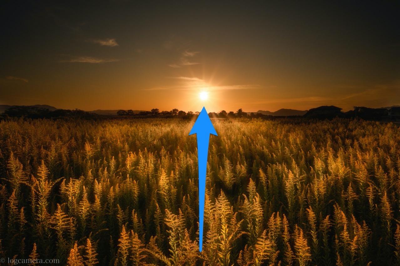 構図の中でまず太陽に目が行く