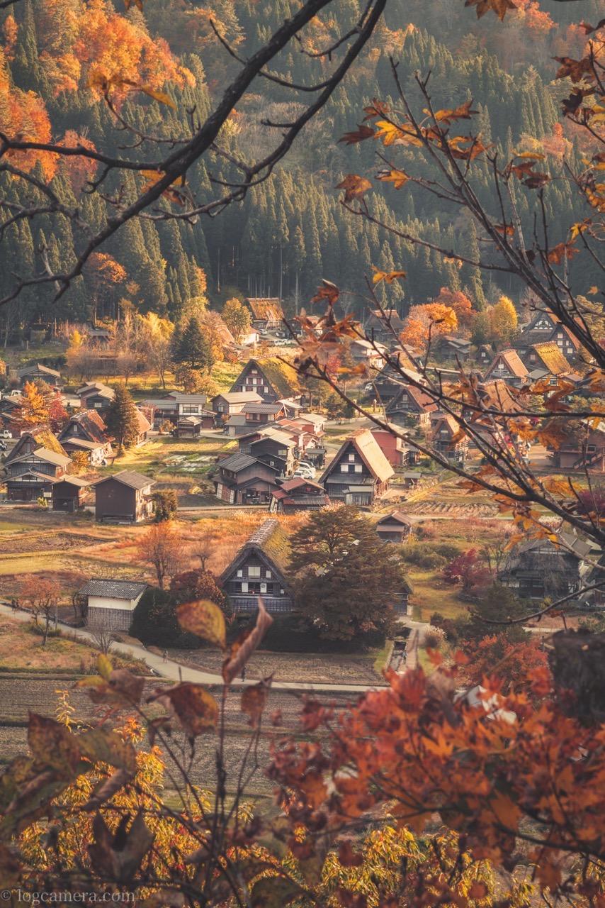 白川郷の紅葉