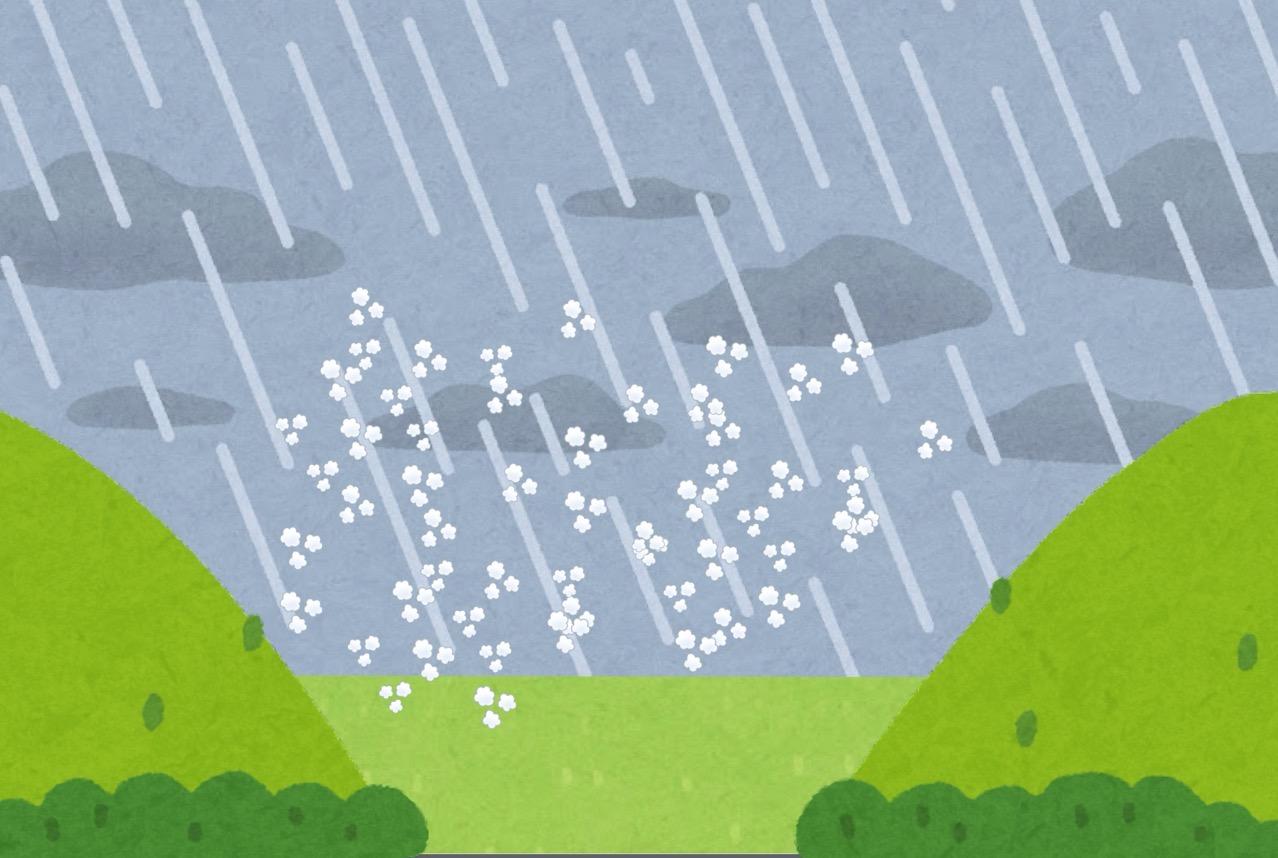 雨が降って湿度が高くなる