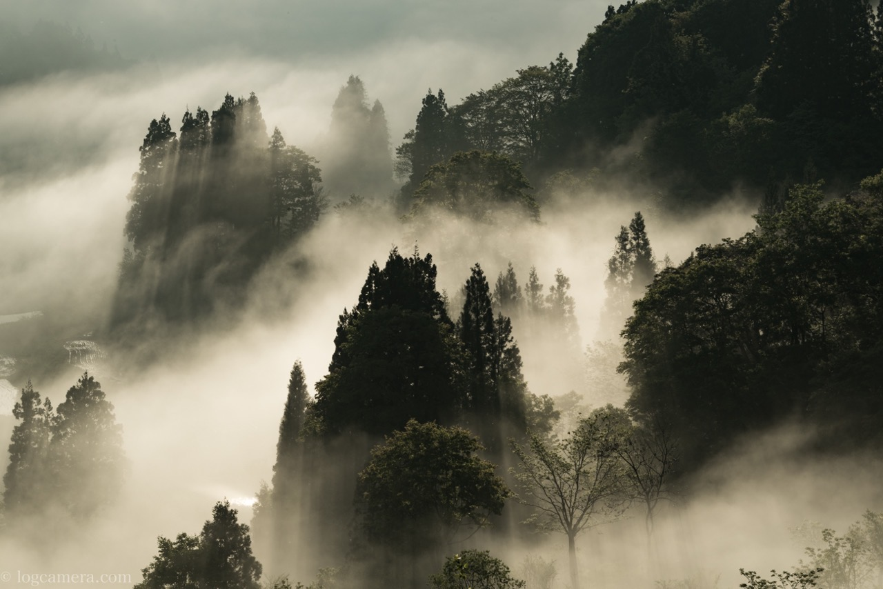 星峠の棚田の雲海