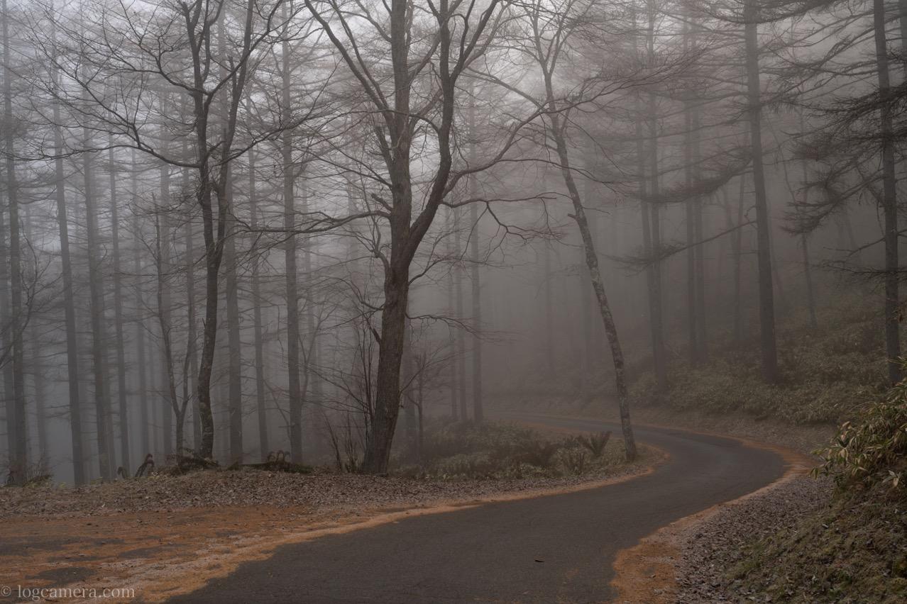 霧につつまれた道